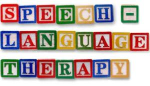 speech-language-therapy blocks